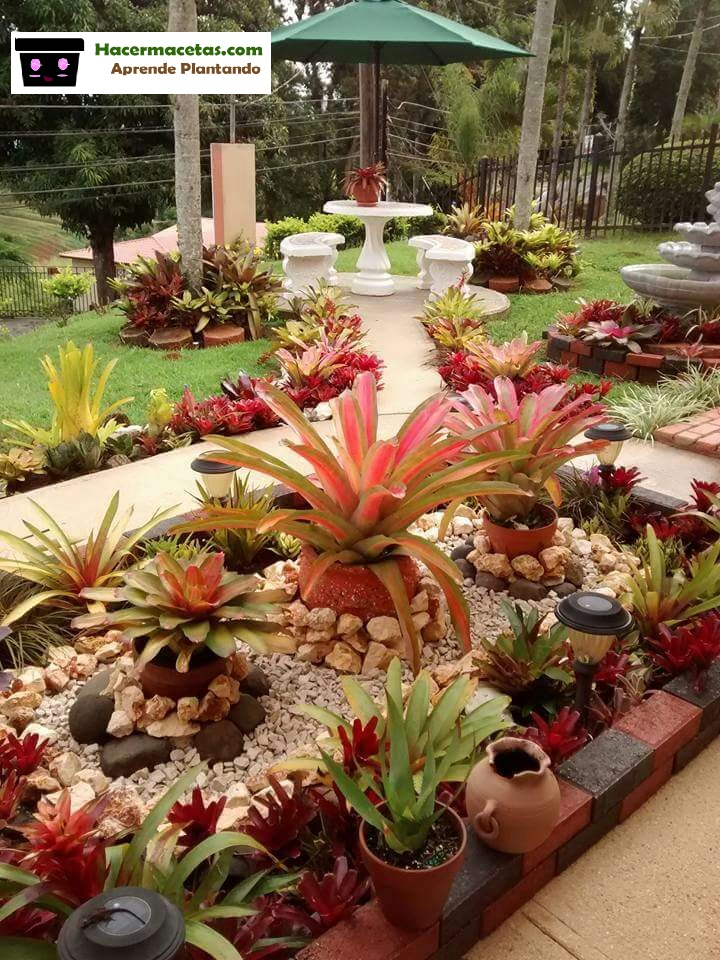 piedas y macetas para tu jardín