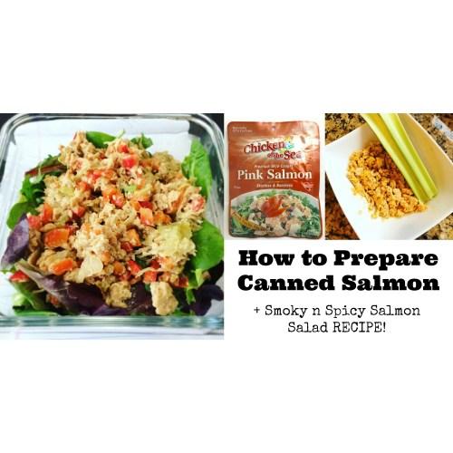 Medium Crop Of Canned Salmon Recipes