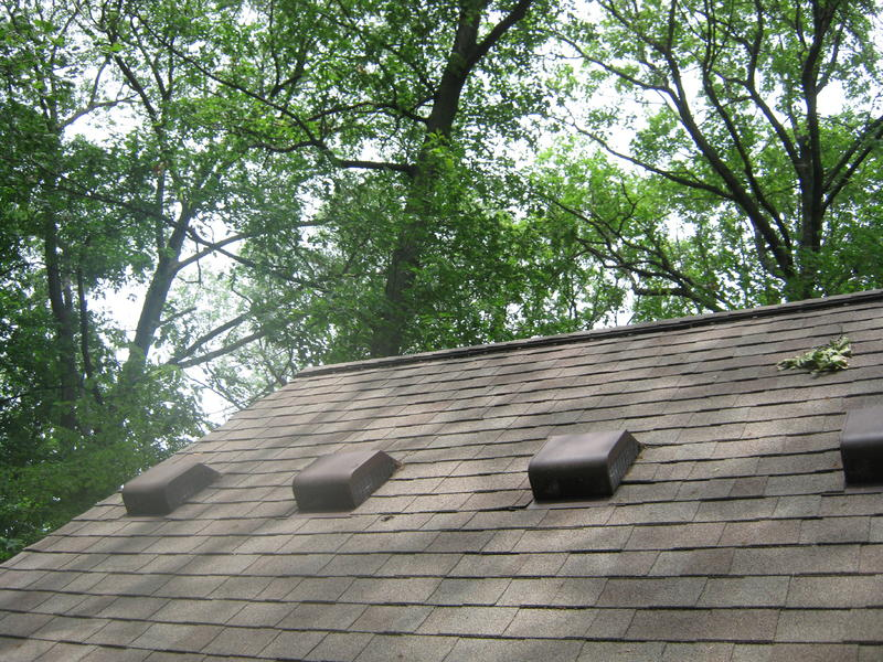 roof estimate form