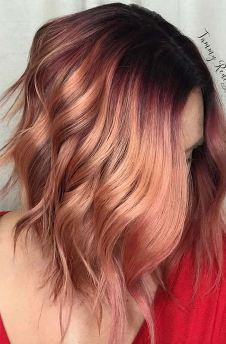 The Best Short Hair Of 2018 Balayage Hair Colours For Summer Hairstyles 2019 – Hairstyles