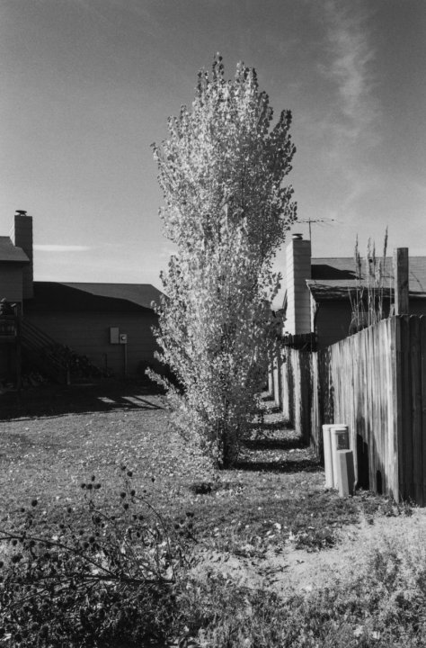 Robert Adams, Arvada, Colorado, 1984-1987