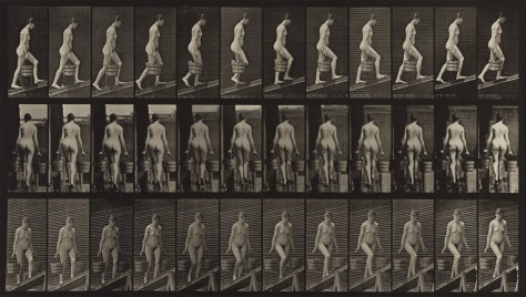 Eadweard Muybridge, Ascending an incline with a bucket of water in each hand, plate 81, from the series Animal Locomotion, 1887