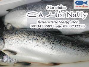 Mua Cá Hồi NaUy ở đâu tại TP. HCM giá bao nhiêu?