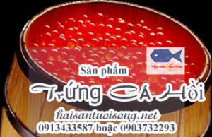 Cách bảo quản trứng cá Hồi ướp muối
