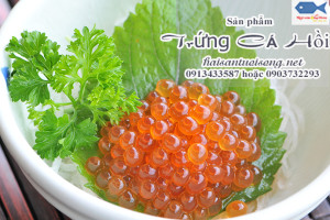 Cách bảo quản trứng cá Hồi lạnh