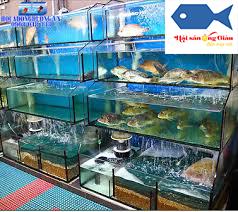 Mau hải sản tươi sống tại Bạc Liêu