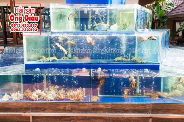 Nơi cung cấp hải sản ngon nhất ở Bình Thạnh