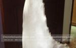 Sụn vi cá mập khô mua bán giá bao nhiêu 1kg – ở đâu Sài Gòn