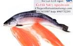 Mua cá hồi Nauy nguyên con nhập khẩu chính gốc