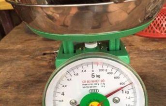 Bến Tre xuất hiện con hến khủng nặng gần 1 kg