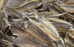 Khô cá chai bán ở đâu tại TpHCM – giá bao nhiêu 1 kg hiện nay