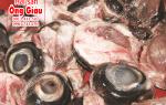 Mắt cá ngừ đại dương Sài Gòn bán ở đâu – giá bao nhiêu 1kg