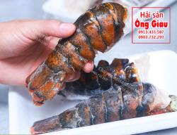 Thân tôm hùm Canada giá bao nhiêu tiền 1 kg – bán ở đâu tại tphcm