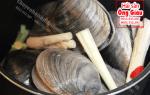 Con Ngán biển Quảng Ninh giá bán bao nhiêu tiền 1kg – mua ở đâu