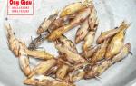 Cá Chốt bông mua ở đâu bán – giá bao nhiêu tiền 1kg – làm món gì ngon