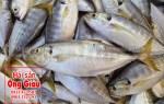 Giá bán cá trác tươi sống ở tại TPHCM hiện nay bao nhiêu 1kg