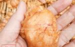 Trứng cá Sặc mua ở đâu bán – giá bao nhiêu tiền 1kg hiện nay