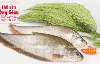 Bà bầu ăn cá thác lác được không – ở đâu có bán trên thị trường