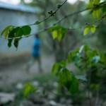 Micharie running errands at dusk, while berries ripen on her mot