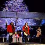 2014はこだてクリスマスファンタジー「ひろさきナイト」レビュー