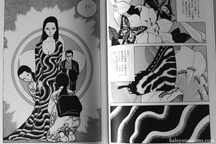 Flowers Of Evil - Kamimura Kazuo Manga