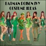 Batman Poison Ivy Costume Ideas