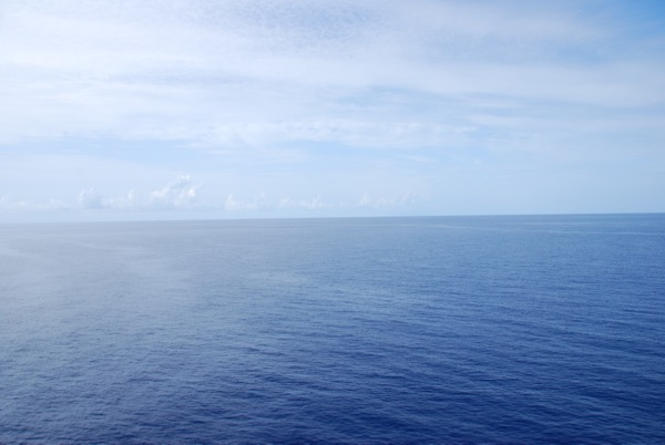 That Cruise Life - 6