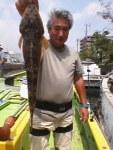 8月21日(水)マゴチ乗合釣果と来週の単独営業のお知らせ