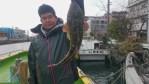 3月14日(火)64㎝モンスターマゴチ 肉厚2k級ヒラメ