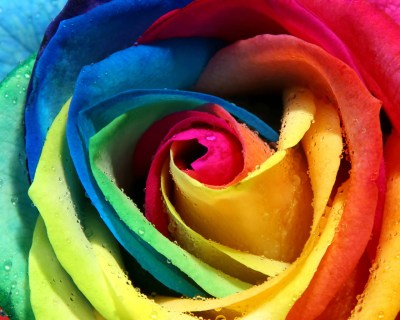 Colorful WALLPAPERS | hamzafiaz