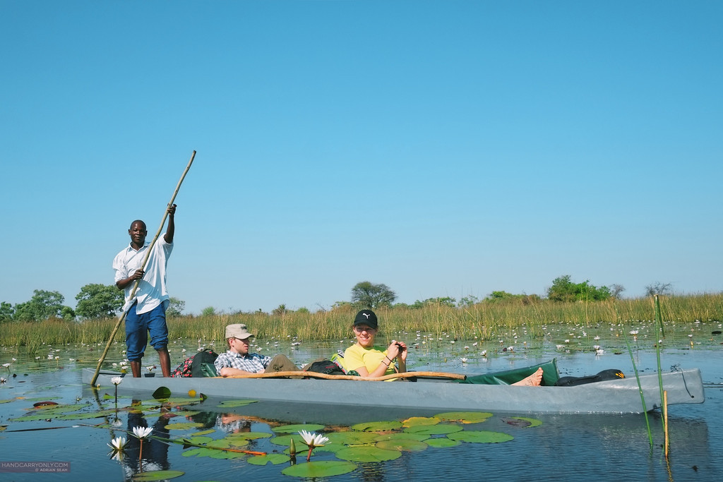 polers with makoros on the okavango delta, botswana africa