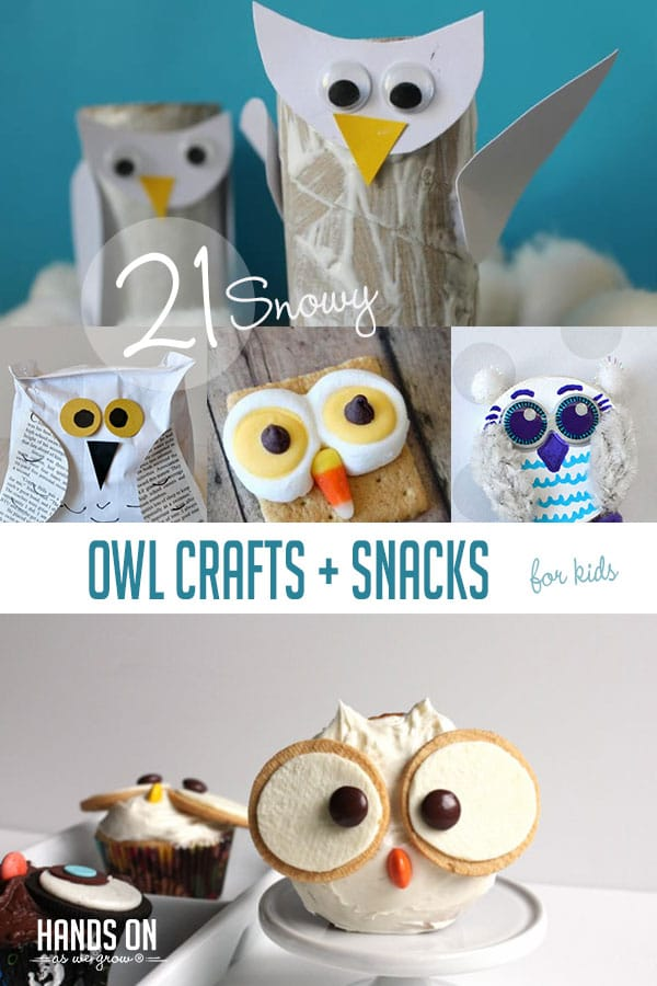21 Snowy Owl Crafts and Snacks for Kids to Make This Winter HOAWG