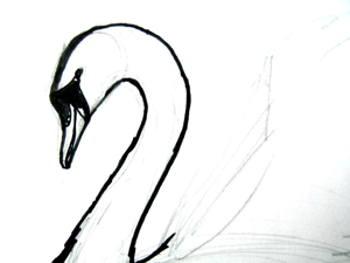 Рисуем голову лебедя