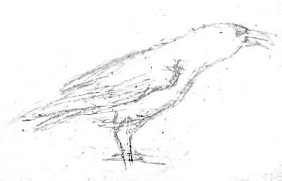 Ворон -рисунок карандашом