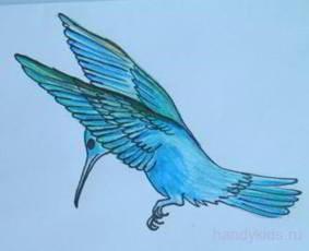 Раскрасим колибри