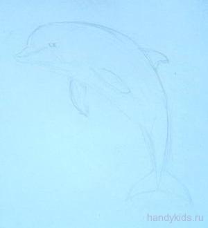 Дельфин -рисунок карандашом