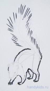 Урок рисования:скунс