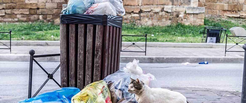Δ.Σ. Χανίων | Μετωπική σύγκρουση για την καθαριότητα (όλοι οι διάλογοι)