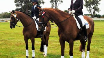 Reserve championship at Taranaki for Lauretta