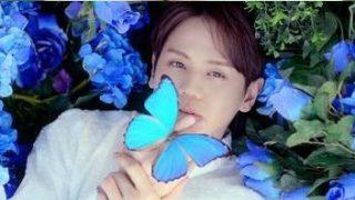 BEAST、「Highlight」先行公開曲「Butterfly」の音源とMV公開