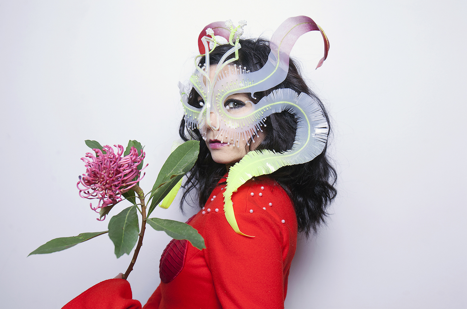 Bjork, Portraits, October 27, 2016