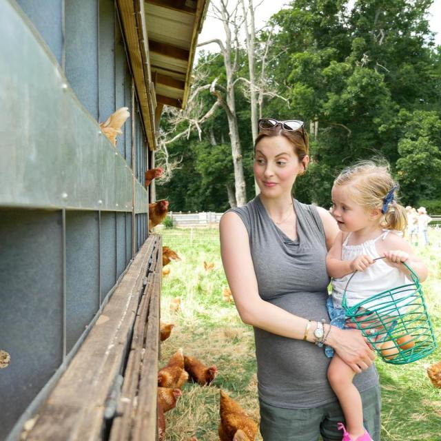 Chicken coop!!! Today on the blog Im sharing a familyhellip