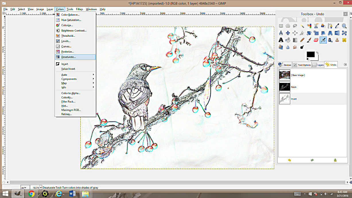 2 Gimp Tutorial Making Coloring Pages From Photographs Using Gimp