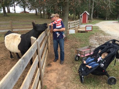 Medium Of Kinsey Family Farm