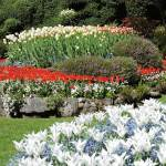 Colorful flower beds in the Sunken Garden