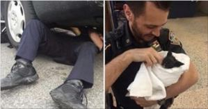 Police Officers Rescued Kitty From Car Engine, And Adopted Him!