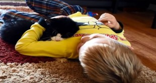 A Family's Last Good Bye To The 20-year-old Cat They Adopted Two Years Ago