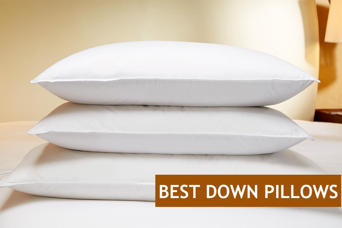 Pillows Online Top 7 Best Down And Feather Pillows You Can Buy Online