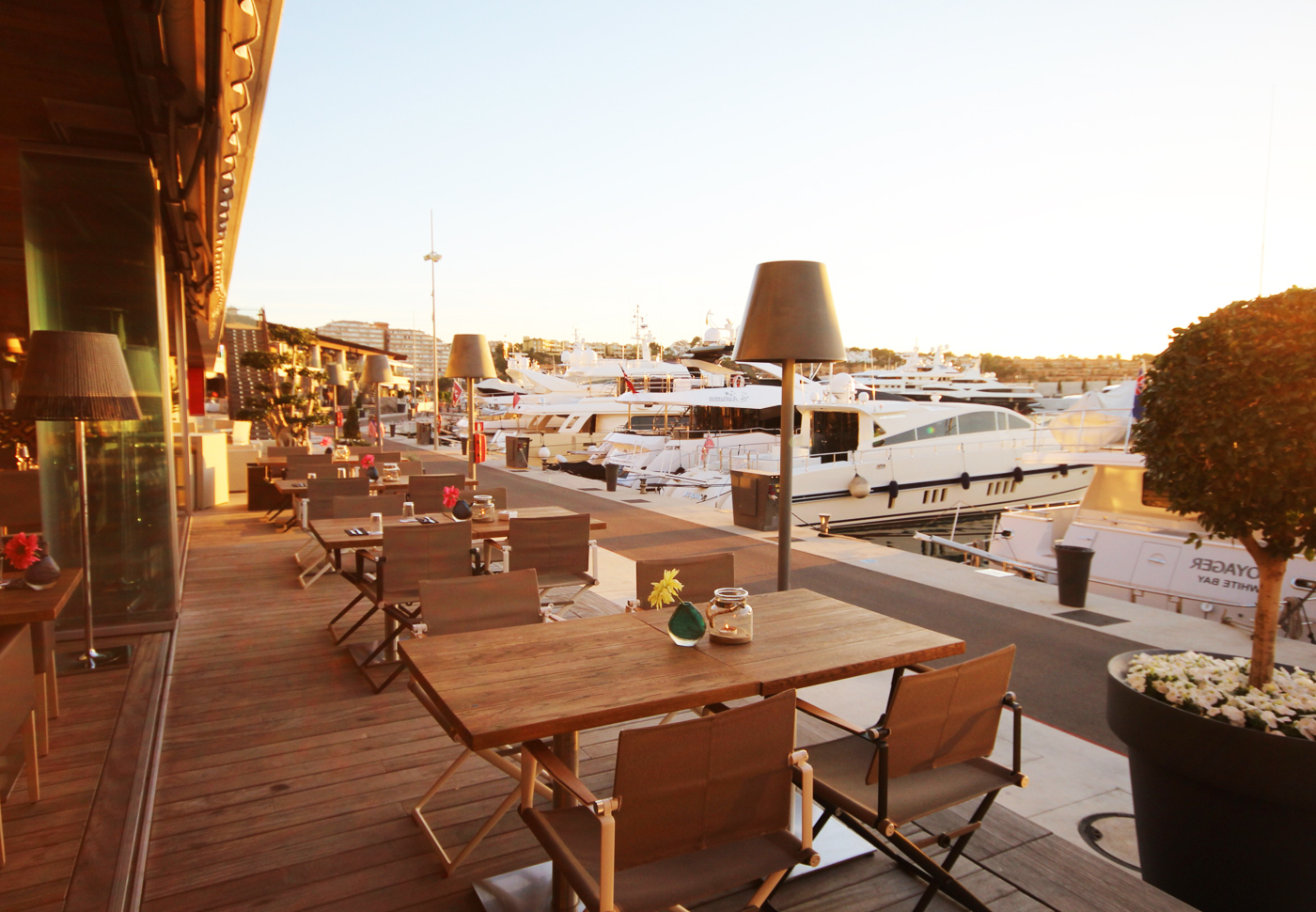 Grill Terrasse The Modern Steakhouse At Port Adriano Harbour Grill Mallorca