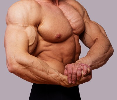 Bodybuilding Big Muscles